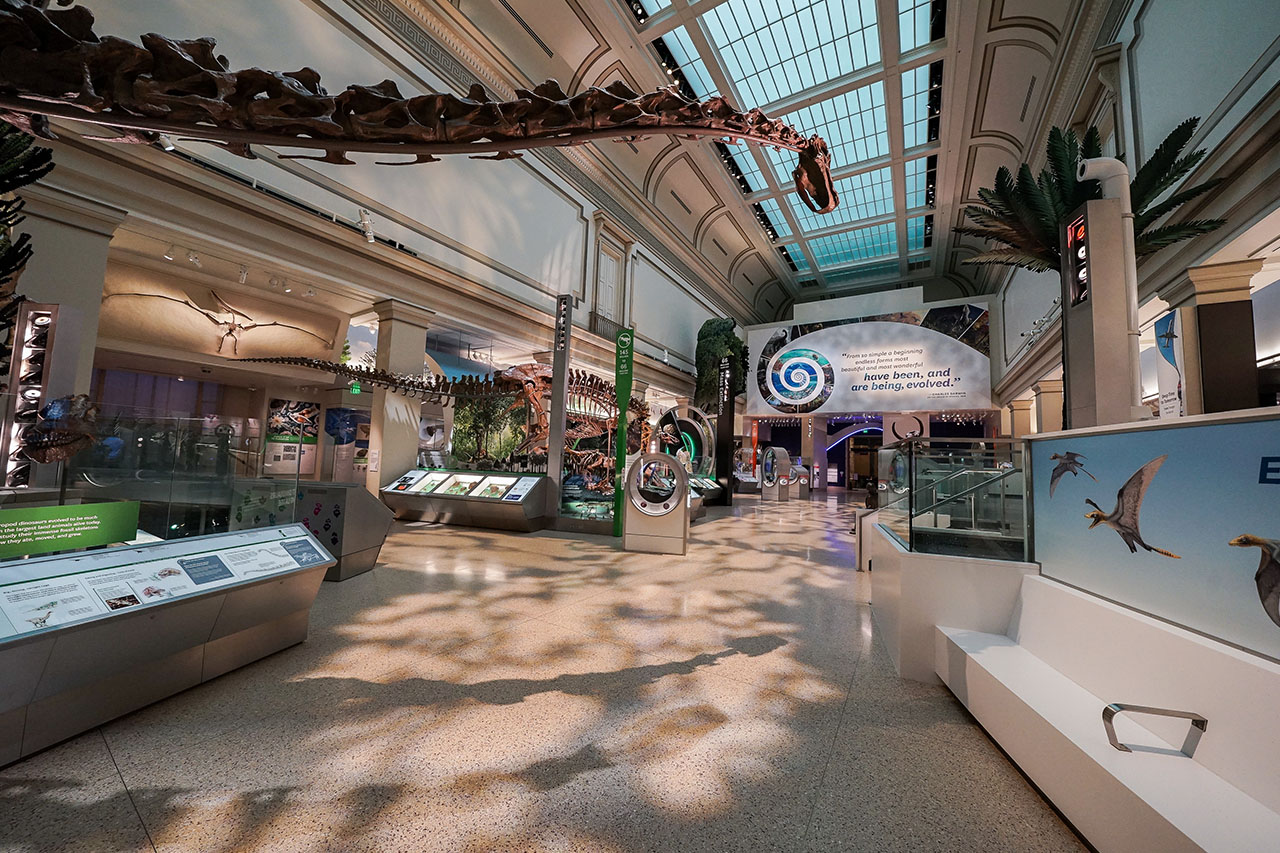 Smithsonian National Museum of Natural History's newest permanent exhibit